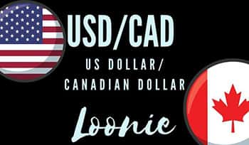 usd-cad the loonie